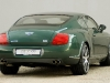 mtm-bentley-continental-gt-birkin-edition-3.jpg